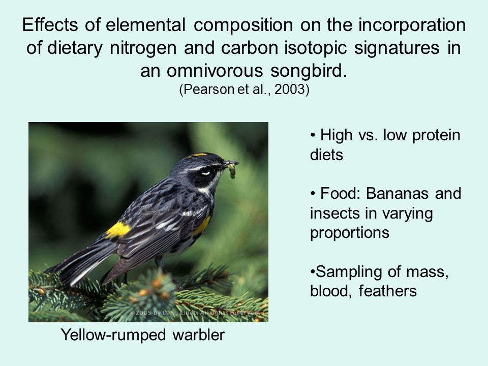 Effects of elemental composition on the incorporation of dietary nitrogen and carbon isotopic signatures in an omnivorous songbird. (Pearson et al., 2