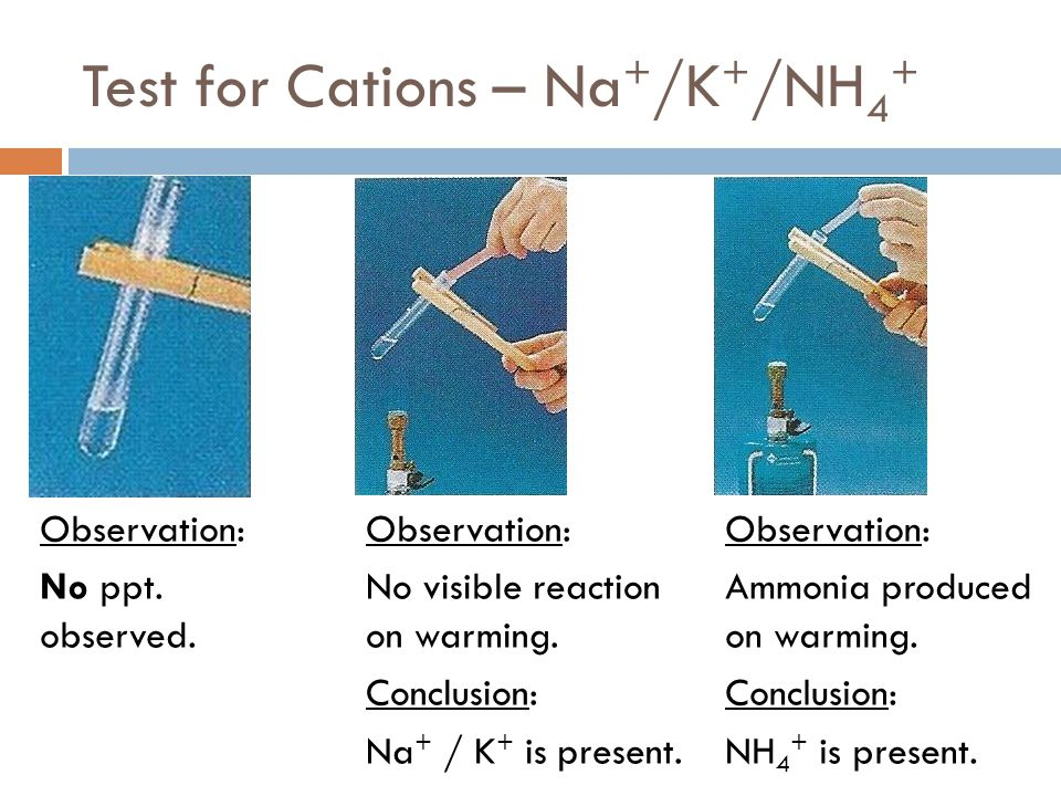 Test for Cations – Na + /K + /NH 4 + Observation: No ppt. observed. Observation: No visible reaction on warming. Conclusion: Na + / K + is present. Ob