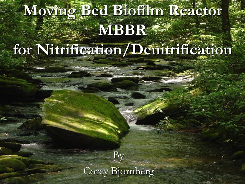 Moving Bed Biofilm Reactor MBBR for Nitrification/Denitrification By Corey Bjornberg
