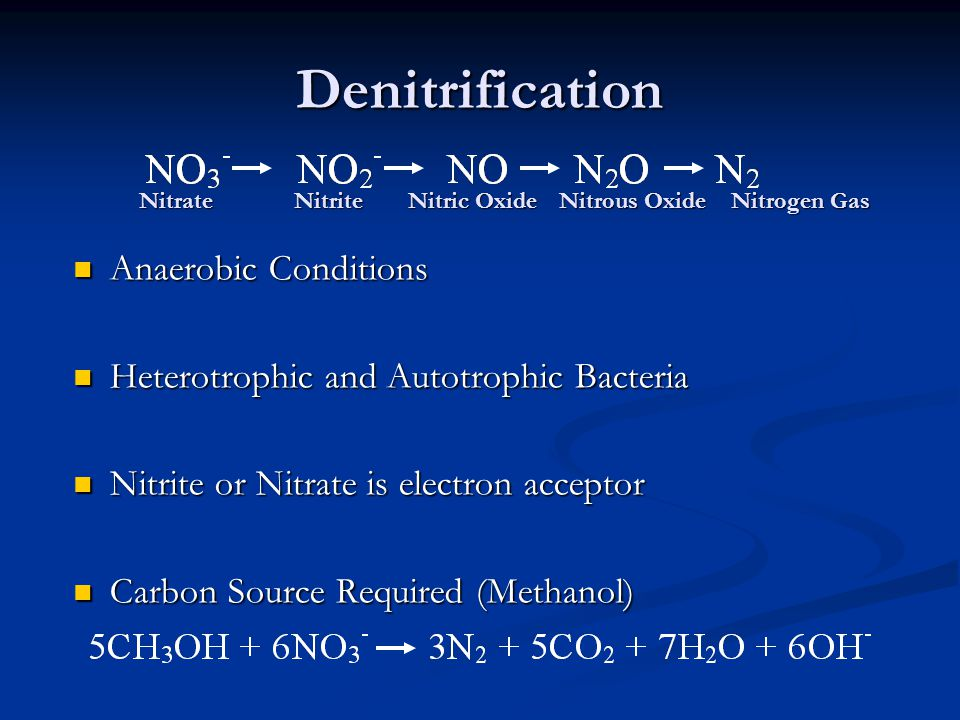 Denitrification Anaerobic Conditions Anaerobic Conditions Heterotrophic and Autotrophic Bacteria Heterotrophic and Autotrophic Bacteria Nitrite or Nitrate is electron acceptor Nitrite or Nitrate is electron acceptor Carbon Source Required (Methanol) Carbon Source Required (Methanol) NitrateNitrite Nitric Oxide Nitrous Oxide Nitrogen Gas