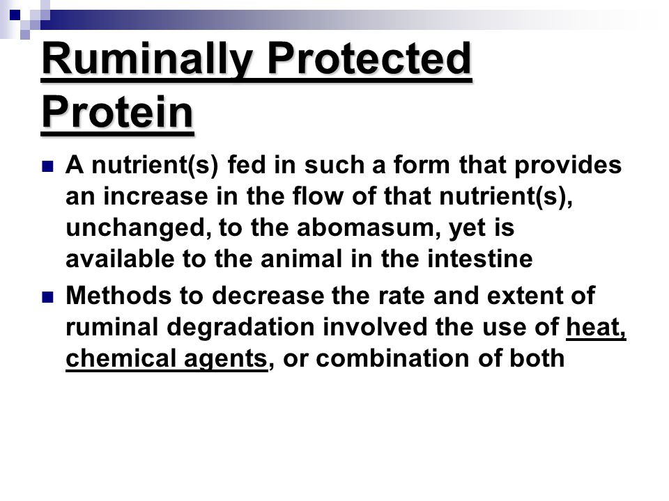 Protein content of protein supplements CP DIP UIPSolPNPNADFIP %DM%CP%CP%CP %SolP %CP Animal sources Blood meal93.8 25 75 5 0 1 Feather meal85.8 30 70 989 32 Fishmeal67.9 40 60 21 0 1 Meat and bone50 47 5316.193.8 4.9 Non-protein nitrogen sources Urea291100 0100100 0