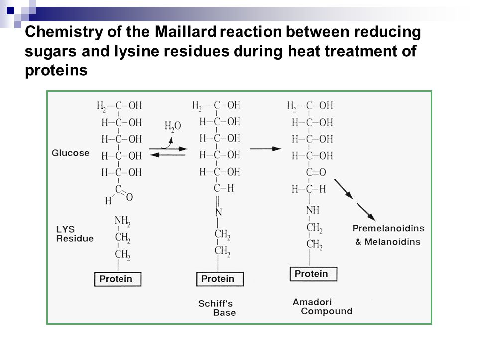 Heat Processing cont.Over heating also causes significant losses of lysine, cysine, and arginine.
