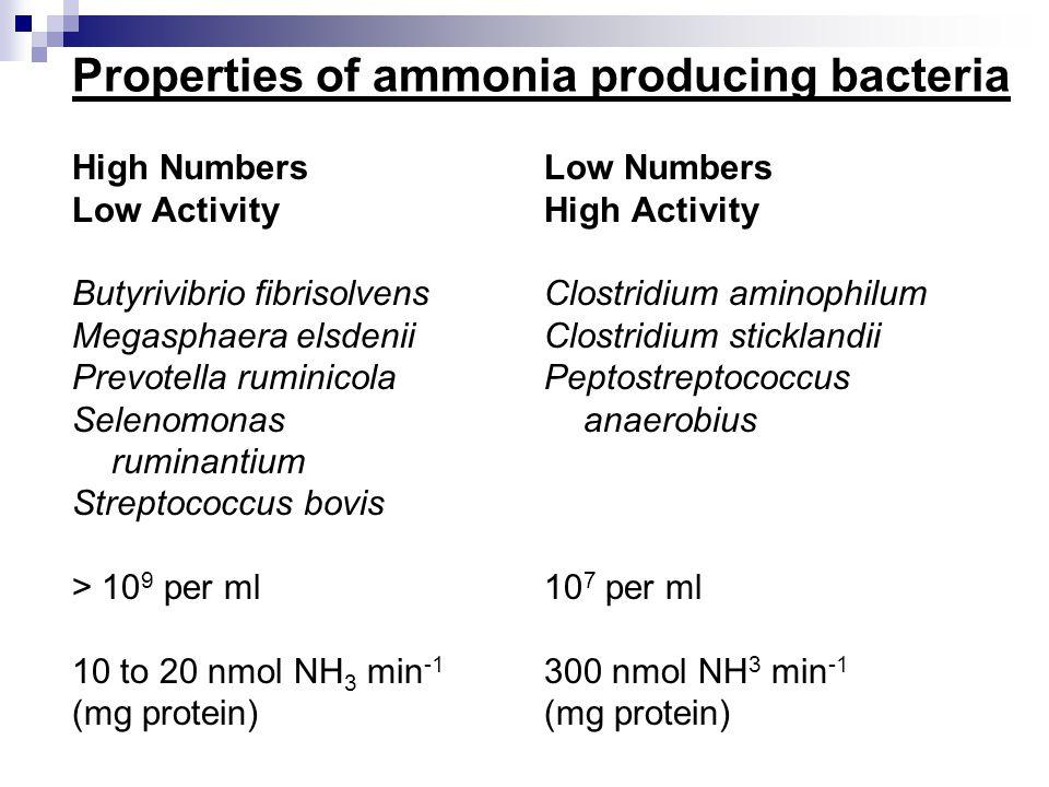 PROTEIN OLIGOPEPTIDES DIPEPTIDES AMINO ACIDS AMMONIA D.