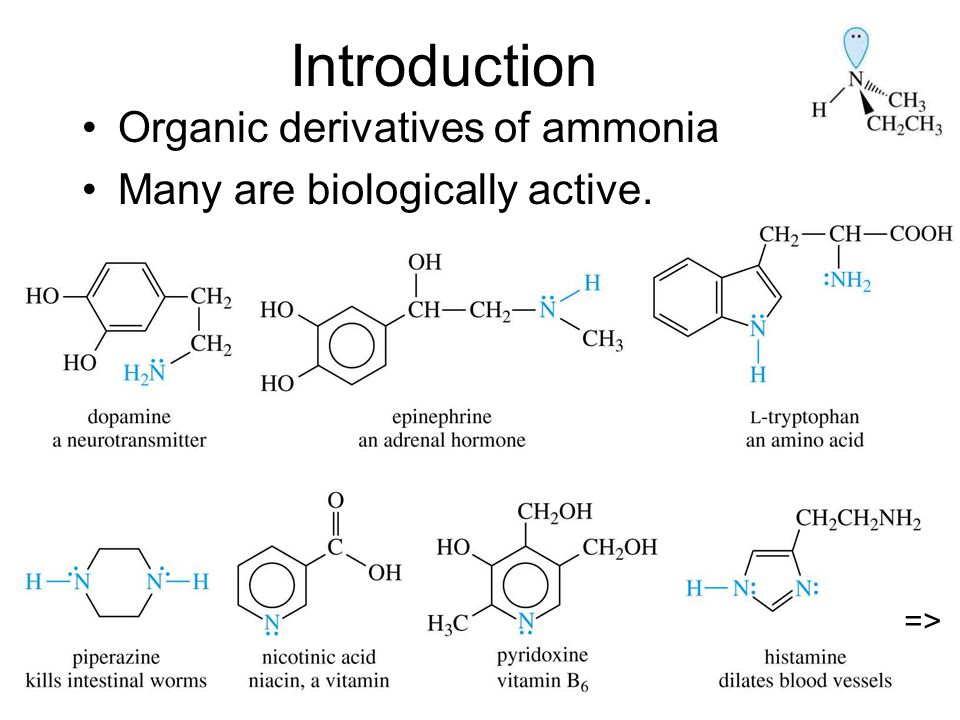 Chapter 192 Introduction Organic derivatives of ammonia Many are biologically active. =>