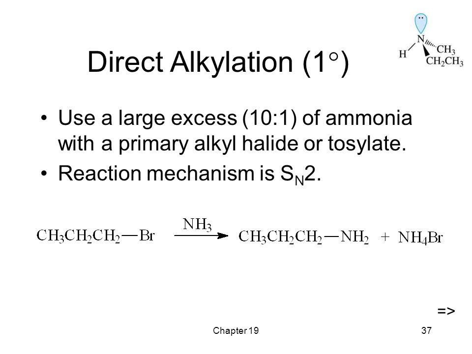 Chapter 1937 Direct Alkylation (1  ) Use a large excess (10:1) of ammonia with a primary alkyl halide or tosylate.