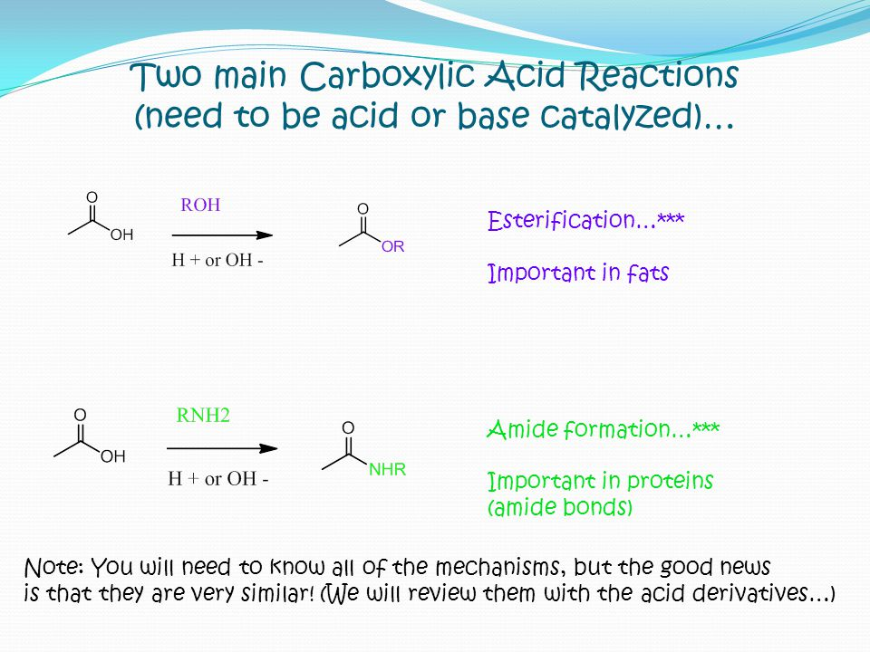 Two main Carboxylic Acid Reactions (need to be acid or base catalyzed)… Esterification…*** Important in fats Amide formation…*** Important in proteins