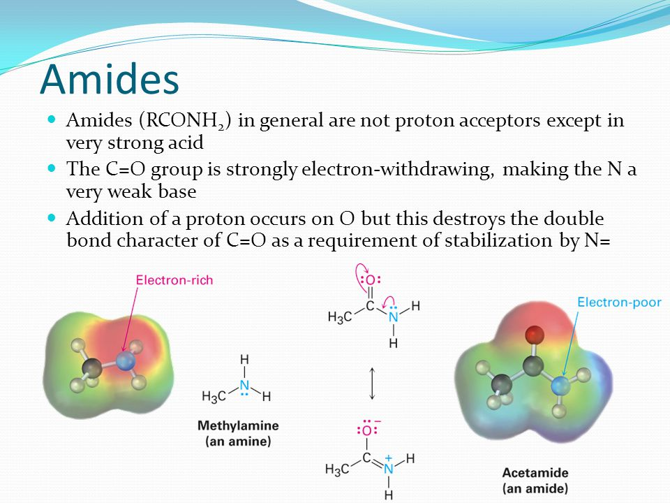 Amides (RCONH 2 ) in general are not proton acceptors except in very strong acid The C=O group is strongly electron-withdrawing, making the N a very w