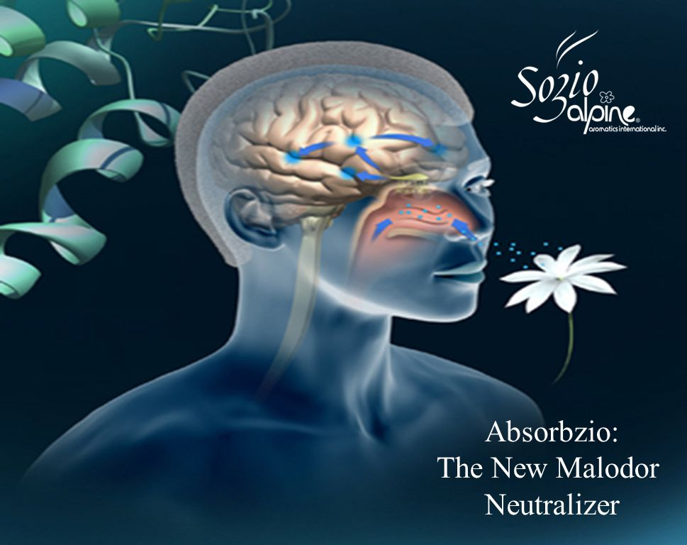 WHAT IS ABSORBZIO.