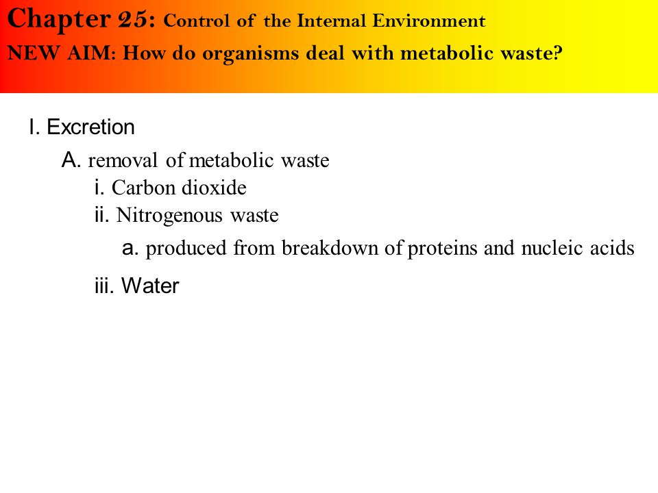 Chapter 25: Control of the Internal Environment NEW AIM: How do organisms deal with metabolic waste.