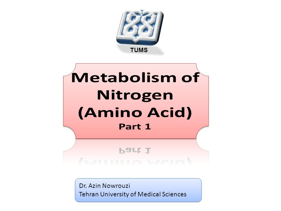 Dr. Azin Nowrouzi Tehran University of Medical Sciences Dr.
