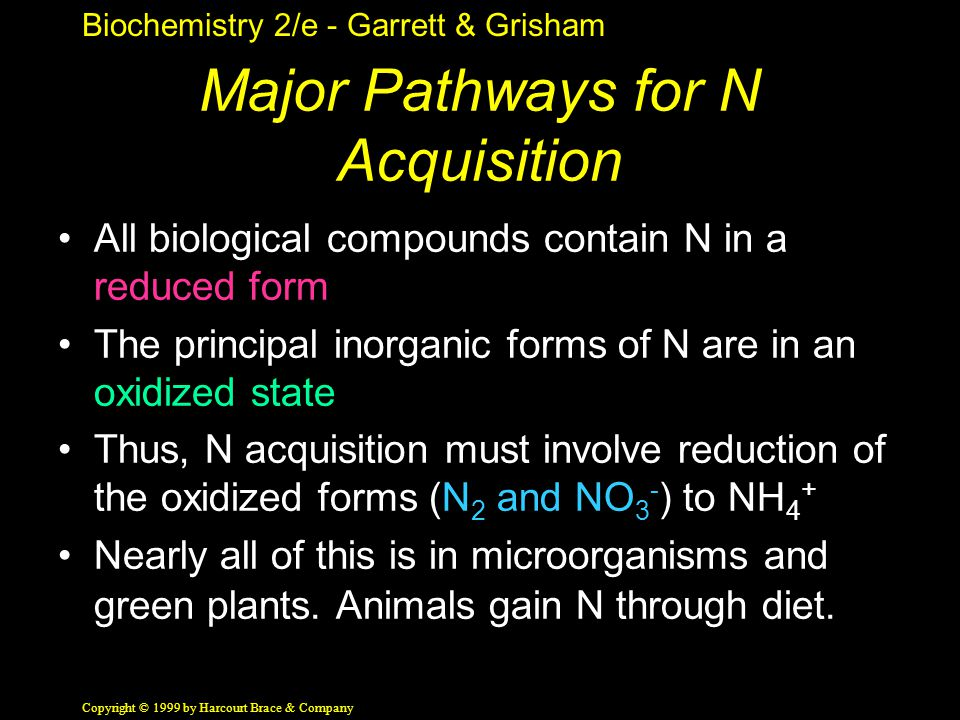 Biochemistry 2/e - Garrett & Grisham Copyright © 1999 by Harcourt Brace & Company Major Pathways for N Acquisition All biological compounds contain N in a reduced form The principal inorganic forms of N are in an oxidized state Thus, N acquisition must involve reduction of the oxidized forms (N 2 and NO 3 - ) to NH 4 + Nearly all of this is in microorganisms and green plants.