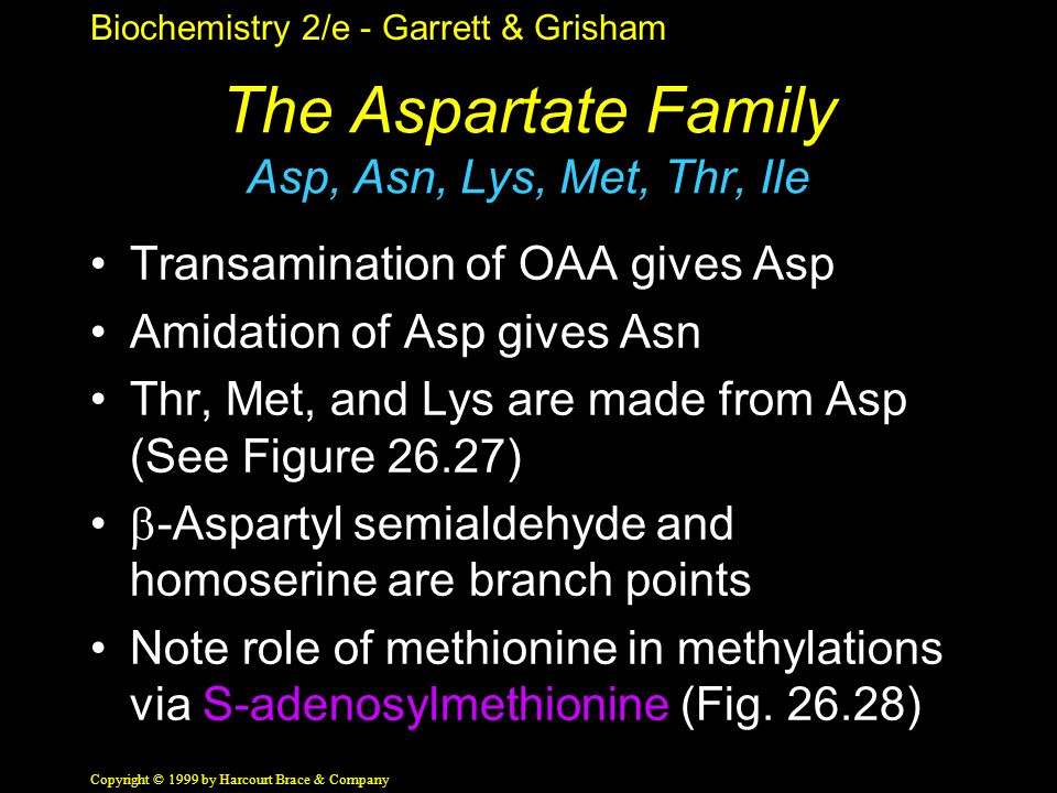 Biochemistry 2/e - Garrett & Grisham Copyright © 1999 by Harcourt Brace & Company The Aspartate Family Asp, Asn, Lys, Met, Thr, Ile Transamination of OAA gives Asp Amidation of Asp gives Asn Thr, Met, and Lys are made from Asp (See Figure 26.27)  -Aspartyl semialdehyde and homoserine are branch points Note role of methionine in methylations via S-adenosylmethionine (Fig.