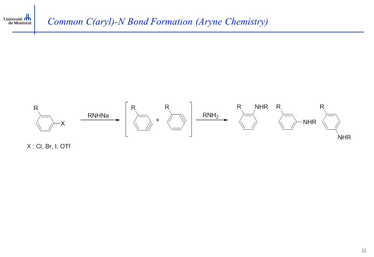 11 Common C(aryl)-N Bond Formation (Aryne Chemistry)