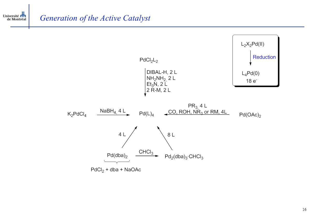 16 Generation of the Active Catalyst