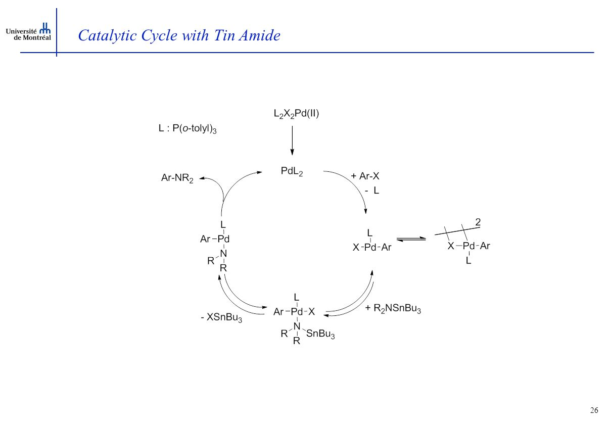 26 Catalytic Cycle with Tin Amide