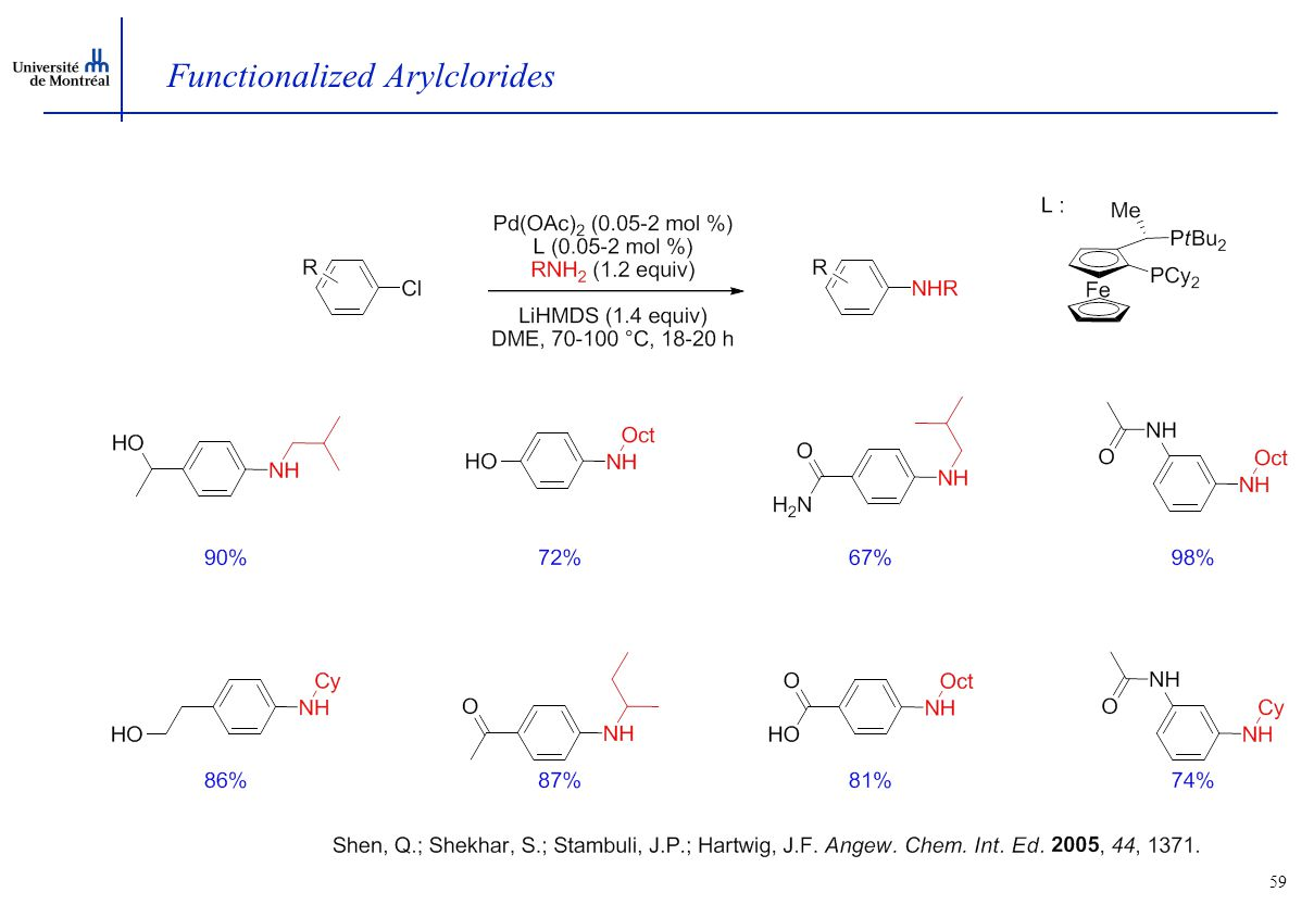 59 Functionalized Arylclorides