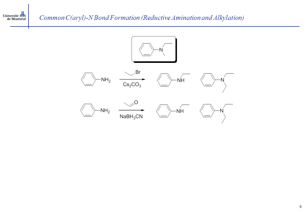 6 Common C(aryl)-N Bond Formation (Reductive Amination and Alkylation)