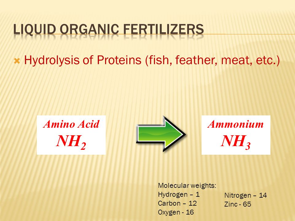  Hydrolysis of Proteins (fish, feather, meat, etc.) Ammonium NH 3 Amino Acid NH 2 Molecular weights: Hydrogen – 1 Carbon – 12 Oxygen - 16 Nitrogen –