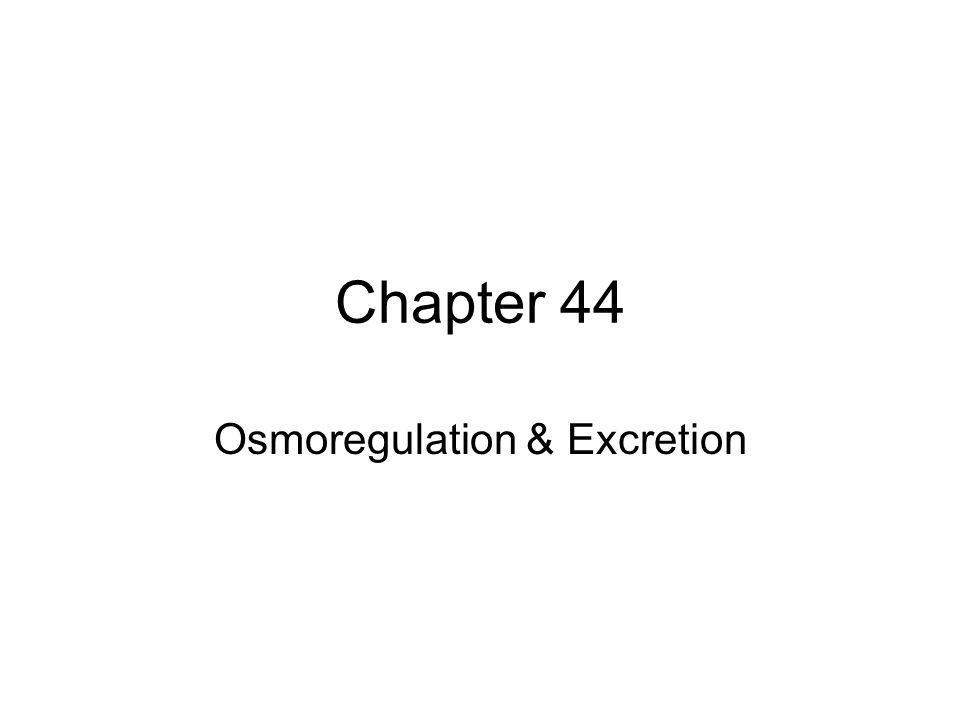 Chapter 44 Osmoregulation & Excretion