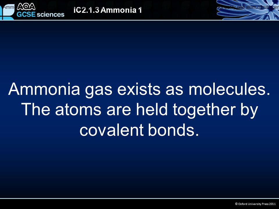 IC2.1.3 Ammonia 1 © Oxford University Press 2011 Ammonia gas exists as molecules.