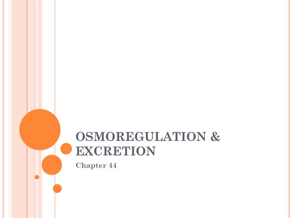 OSMOREGULATION & EXCRETION Chapter 44
