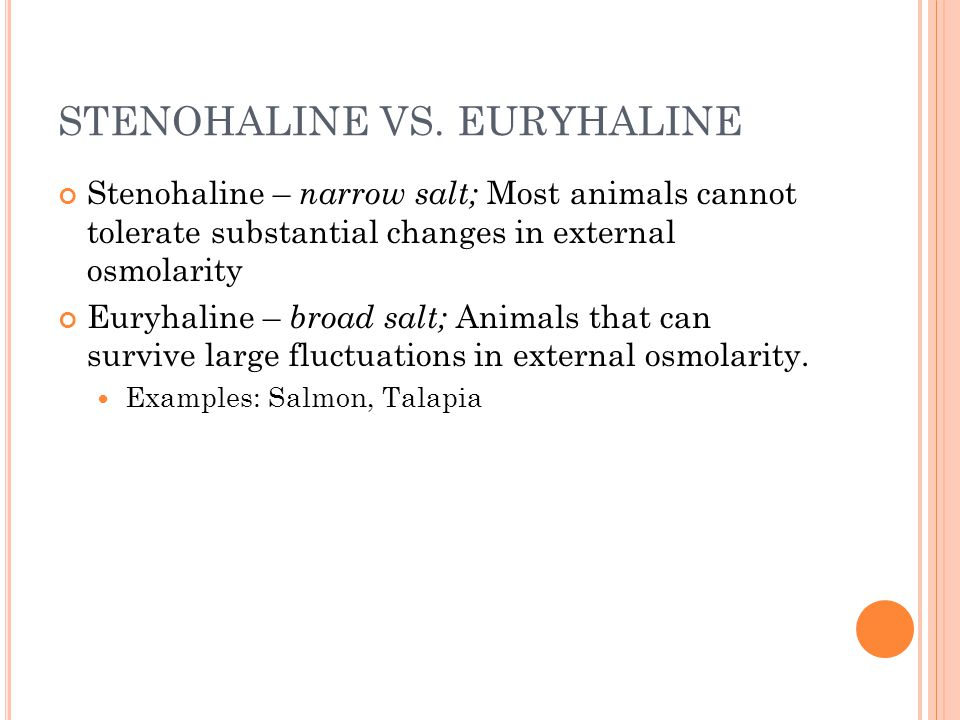 STENOHALINE VS. EURYHALINE Stenohaline – narrow salt; Most animals cannot tolerate substantial changes in external osmolarity Euryhaline – broad salt;