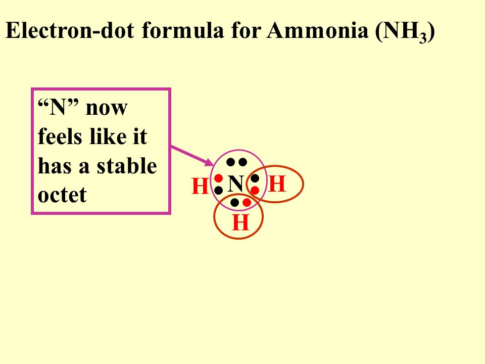 Electron-dot formula for Ammonia (NH 3 ) N H H H N now feels like it has a stable octet
