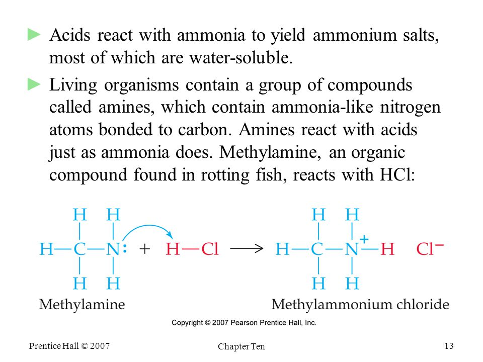 Prentice Hall © 2007 Chapter Ten 13 ►Acids react with ammonia to yield ammonium salts, most of which are water-soluble.