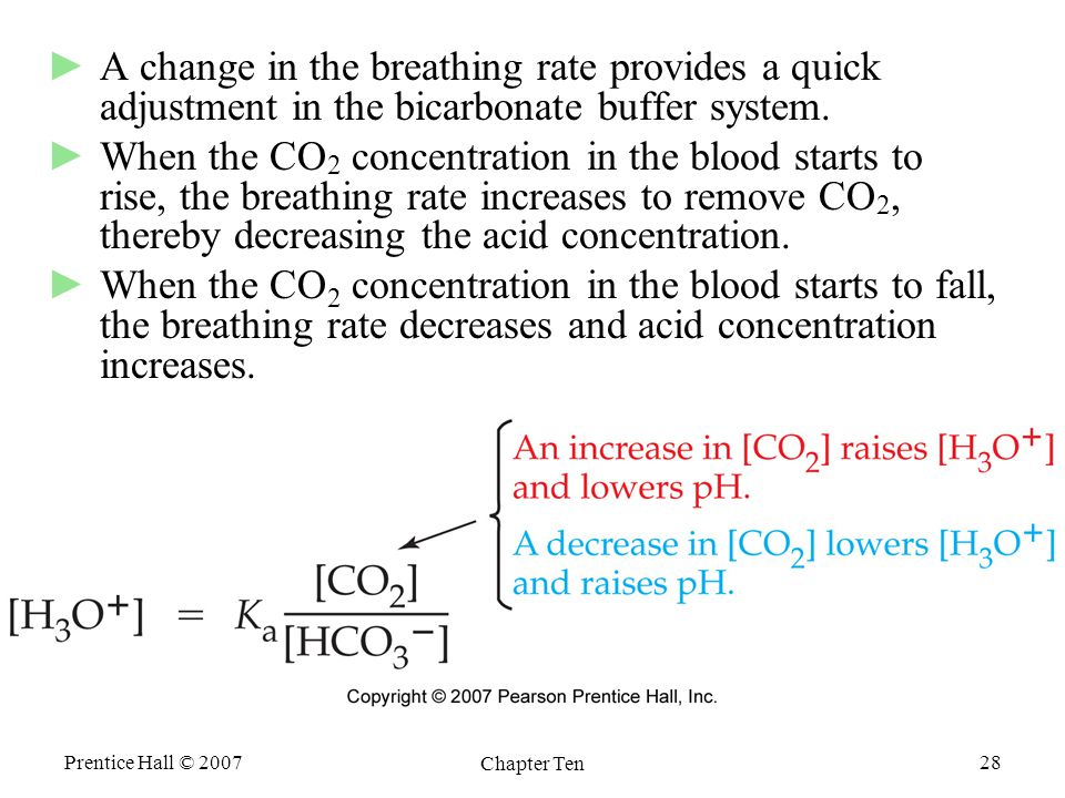 Prentice Hall © 2007 Chapter Ten 28 ►A change in the breathing rate provides a quick adjustment in the bicarbonate buffer system.