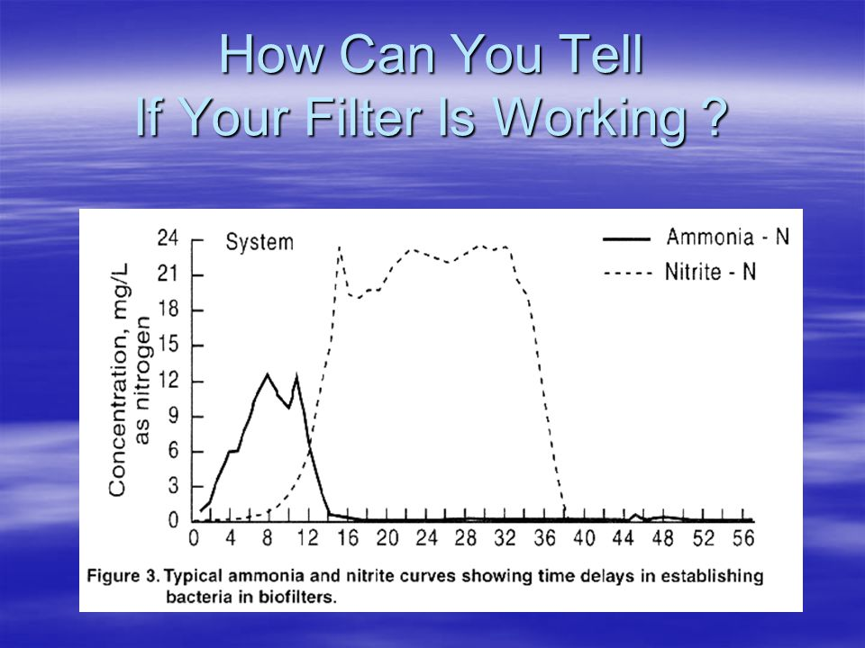 How Can You Tell If Your Filter Is Working ?