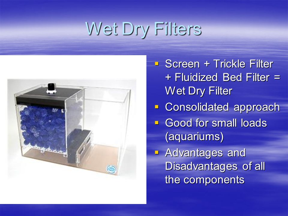 Wet Dry Filters  Screen + Trickle Filter + Fluidized Bed Filter = Wet Dry Filter  Consolidated approach  Good for small loads (aquariums)  Advantages and Disadvantages of all the components