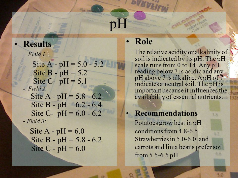 pH Results - Field 1 : Site A - pH = 5.0 - 5.2 Site B - pH = 5.2 Site C- pH = 5.1 - Field 2: Site A - pH = 5.8 - 6.2 Site B - pH = 6.2 - 6.4 Site C- pH = 6.0 - 6.2 - Field 3: Site A - pH = 6.0 Site B - pH = 5.8 - 6.2 Site C - pH = 6.0 Role The relative acidity or alkalinity of soil is indicated by its pH.