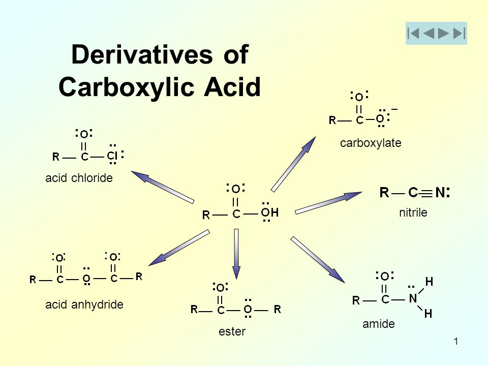 1 Derivatives of Carboxylic Acid acid chloride acid anhydride ester amide nitrile carboxylate