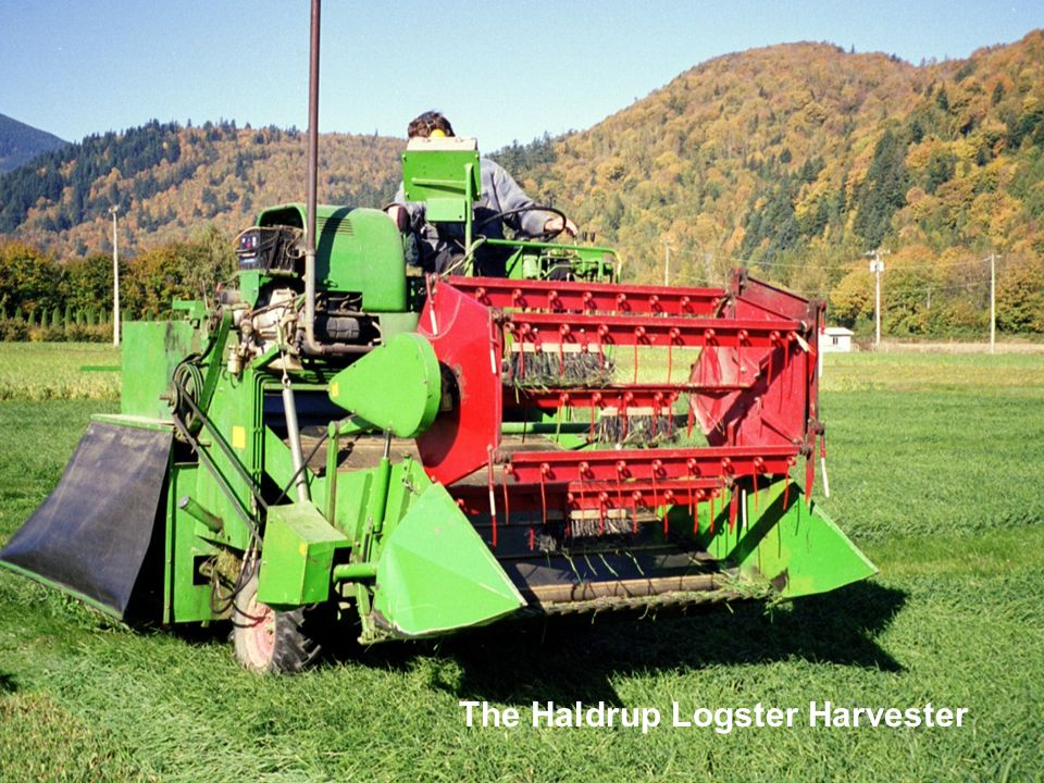 The Haldrup Logster Harvester