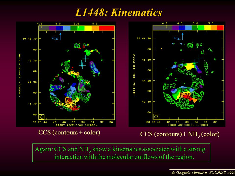 L1448: Kinematics L1448: Kinematics CCS (contours + color) CCS (contours) + NH 3 (color) Vlsr Again: CCS and NH 3 show a kinematics associated with a strong interaction with the molecular outflows of the region.