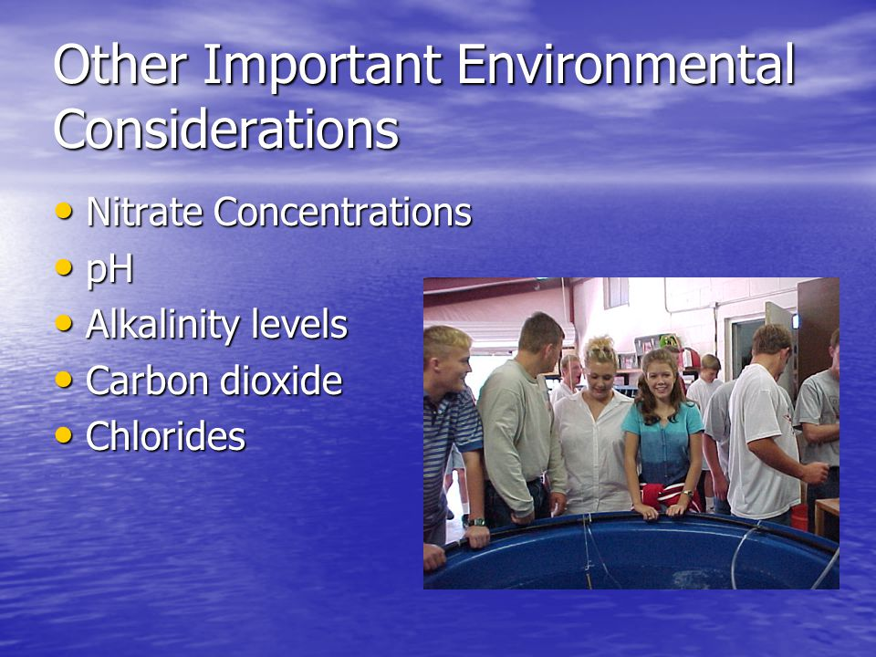 Other Important Environmental Considerations Nitrate Concentrations Nitrate Concentrations pH pH Alkalinity levels Alkalinity levels Carbon dioxide Carbon dioxide Chlorides Chlorides