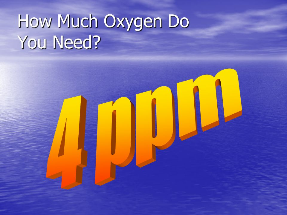 How Much Oxygen Do You Need?