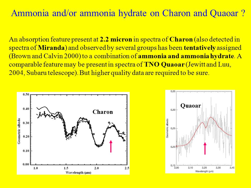 Ammonia and/or ammonia hydrate on Charon and Quaoar .
