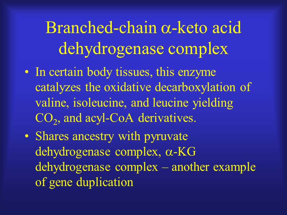 Branched-chain  -keto acid dehydrogenase complex In certain body tissues, this enzyme catalyzes the oxidative decarboxylation of valine, isoleucine, and leucine yielding CO 2, and acyl-CoA derivatives.