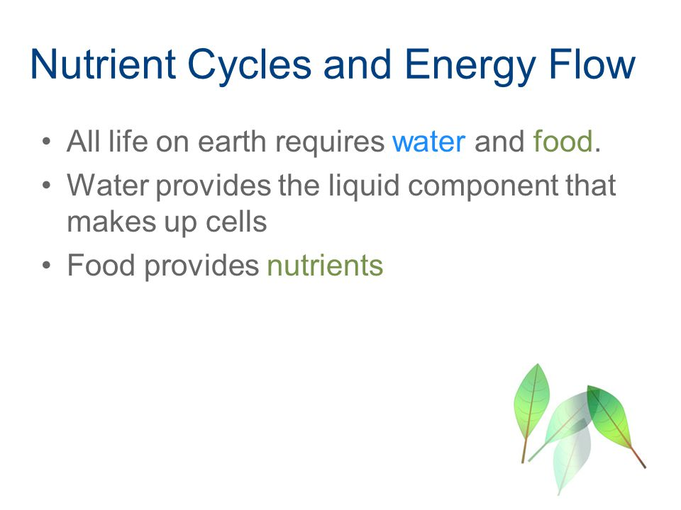 Nutrient Cycles and Energy Flow All life on earth requires water and food.