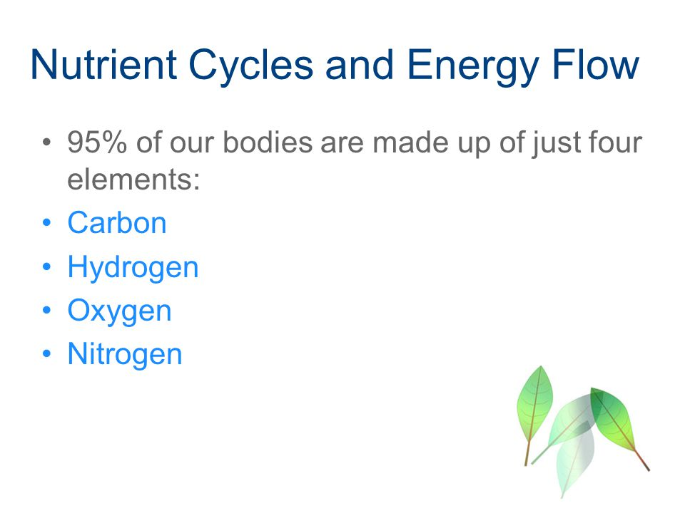 Nutrient Cycles and Energy Flow 95% of our bodies are made up of just four elements: Carbon Hydrogen Oxygen Nitrogen