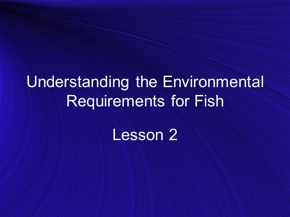 Understanding the Environmental Requirements for Fish Lesson 2