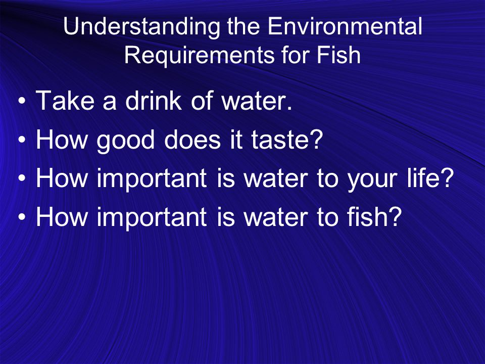 Understanding the Environmental Requirements for Fish Take a drink of water.