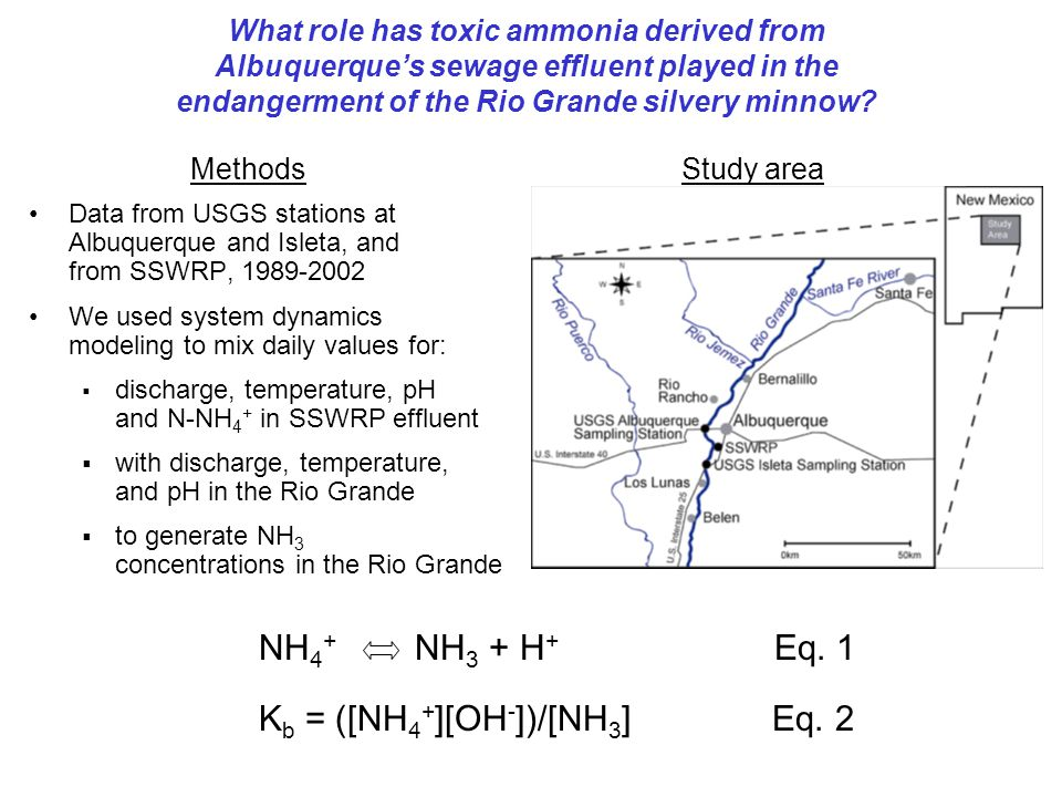 Ammonia modeling for assessing toxicity to fish species in the Rio Grande, 1989-2002 Howard D.