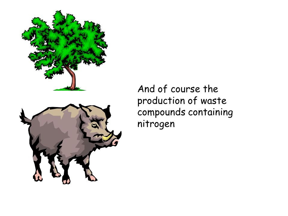 And of course the production of waste compounds containing nitrogen