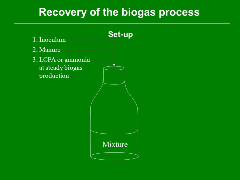 Recovery of the biogas process Set-up Mixture 1: Inoculum 2: Manure 3: LCFA or ammonia at steady biogas production