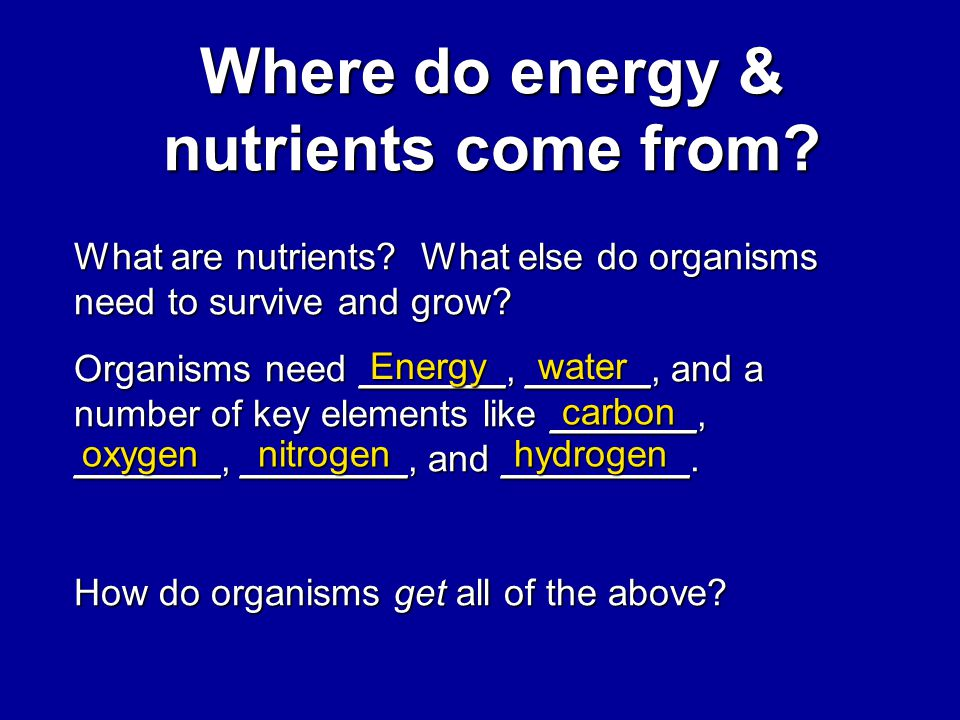 Nutrient Cycles & how Humans impact nutrient cycling Bio1