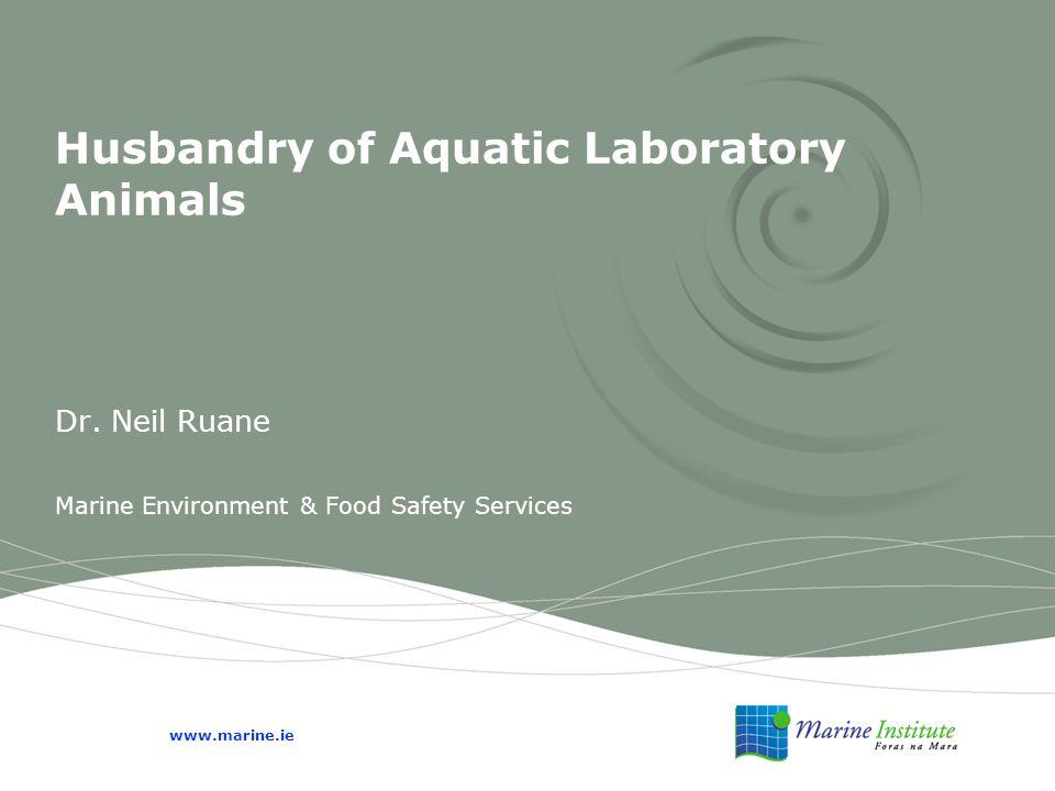 Husbandry of Aquatic Laboratory Animals Dr.