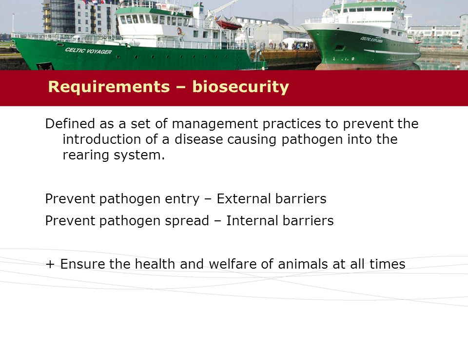 Requirements – biosecurity Defined as a set of management practices to prevent the introduction of a disease causing pathogen into the rearing system.