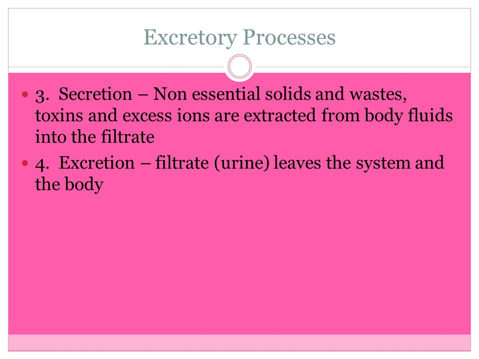 Excretory Processes 3. Secretion – Non essential solids and wastes, toxins and excess ions are extracted from body fluids into the filtrate 4. Excreti
